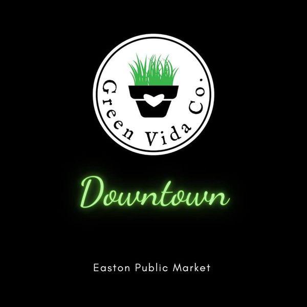 Green Vida Downtown – Coming in February
